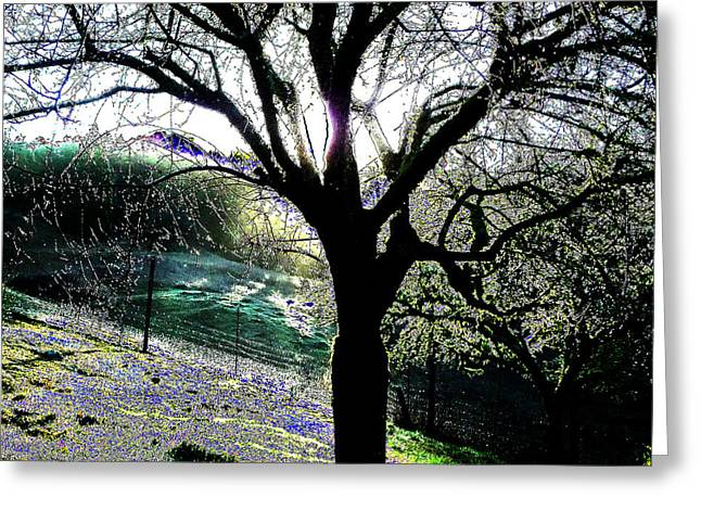 Magical Morning Greeting Card by JoAnn SkyWatcher