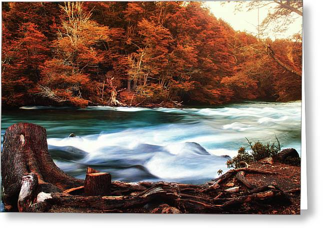 Autumnal Landscape With Lake In The Argentine Patagonia Greeting Card