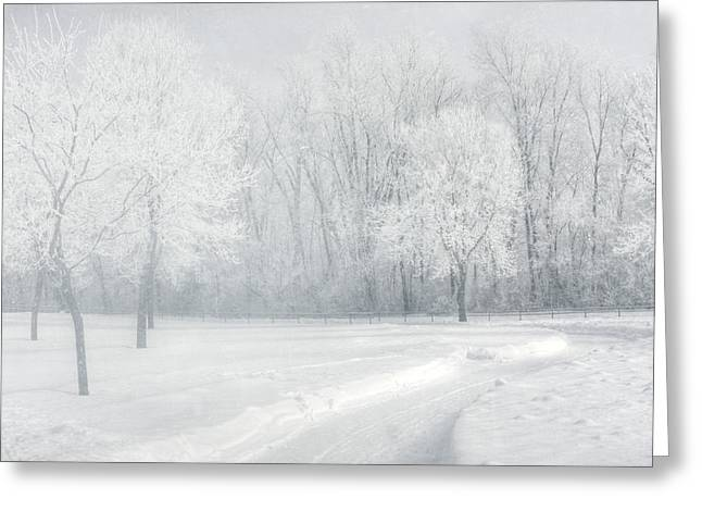magical Winter day Greeting Card