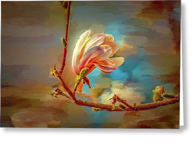 Magnolia Abs #h4 Greeting Card