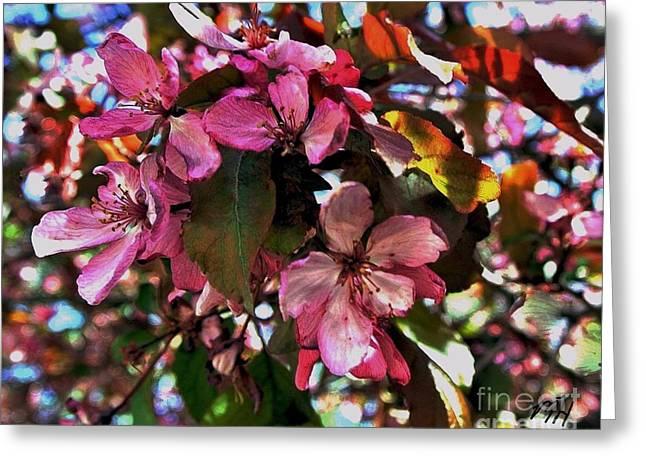 Magnolia Abstract Greeting Card by Marsha Heiken