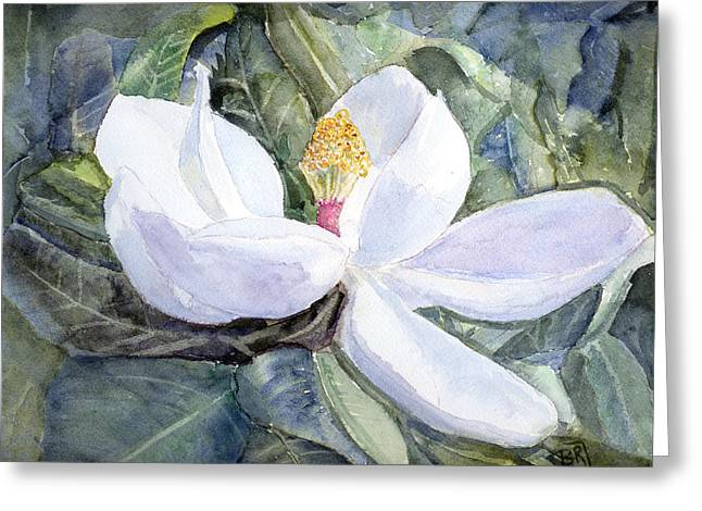 Magnolia Blossom Greeting Card by Barry Jones