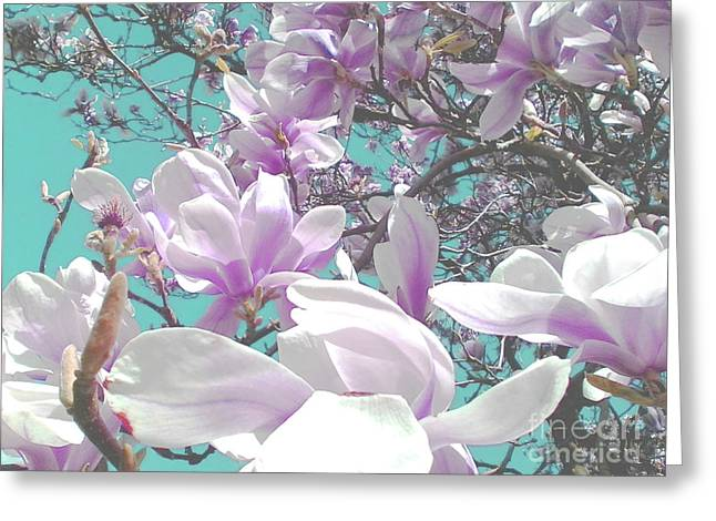 Greeting Card featuring the photograph Magnolia Charm by Rebecca Harman
