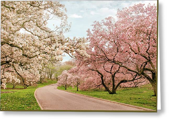 Magnolia Grove Greeting Card by Jessica Jenney
