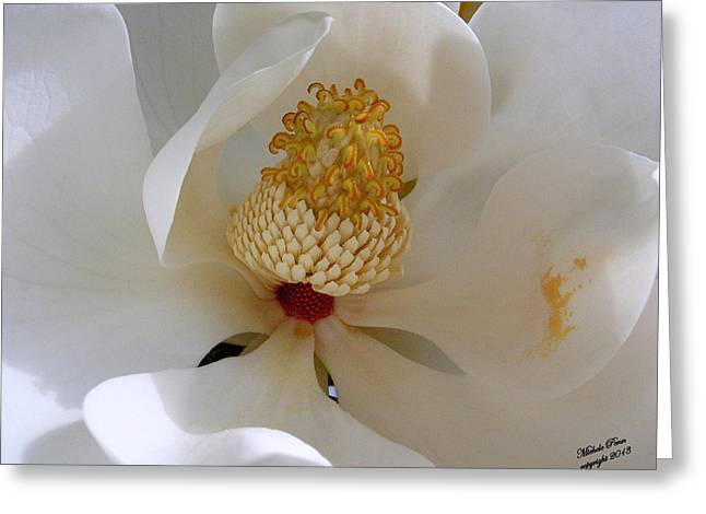 Magnolia Happiness Greeting Card