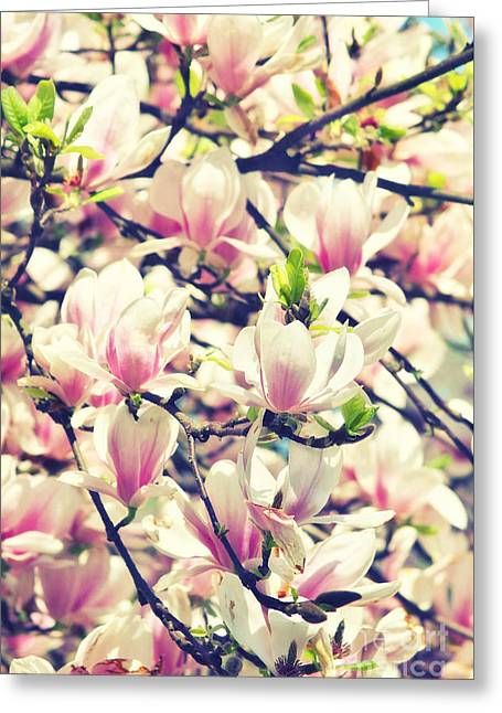 Magnolia II Greeting Card by Angela Doelling AD DESIGN Photo and PhotoArt