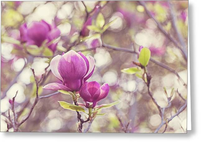 Greeting Card featuring the photograph Magnolia by Melanie Alexandra Price
