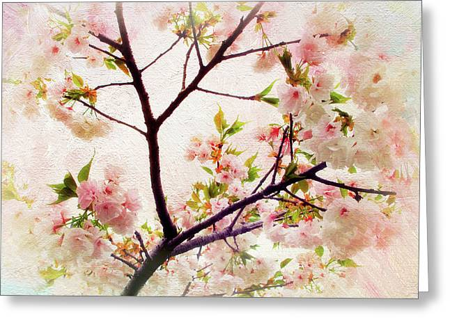 Greeting Card featuring the photograph Asian Cherry Blossoms by Jessica Jenney