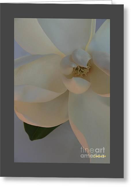 Moody Magnolia  Greeting Card