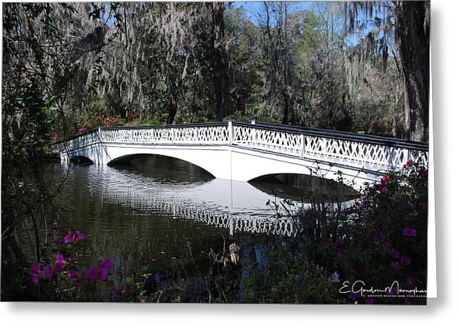 Magnolia Plantation Bridge Greeting Card
