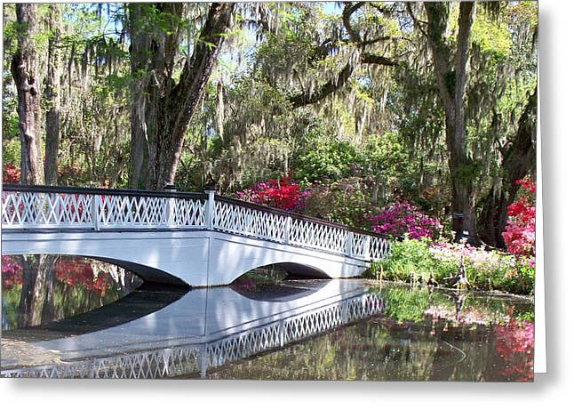 Magnolia Plantation Series 1 Greeting Card by Melanie Snipes
