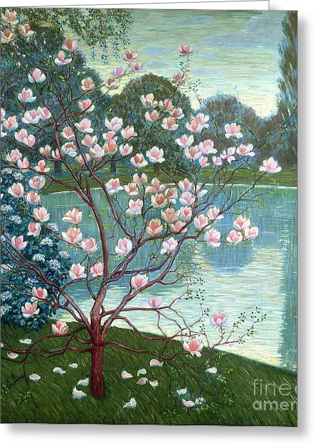 Reflecting Water Greeting Cards - Magnolia Greeting Card by Wilhelm List
