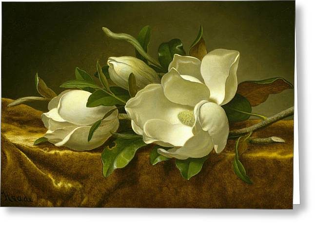Magnolias On Gold Velvet Cloth  Greeting Card by Martin Johnson Heade