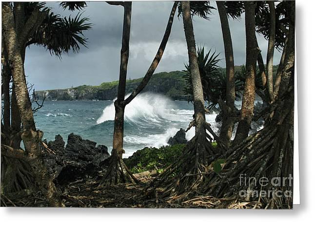Mahama Lauhala Keanae Peninsula Maui Hawaii Greeting Card by Sharon Mau