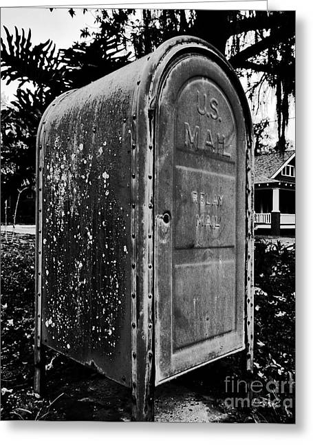 Mail Box Greeting Card by David Lee Thompson