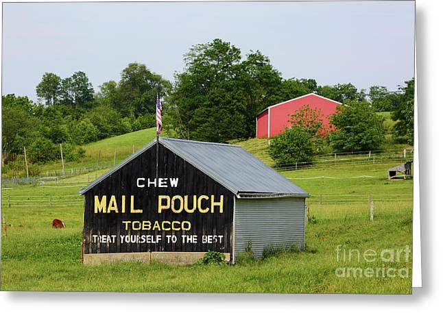 Mail Pouch Barn In Rural Maryland Greeting Card
