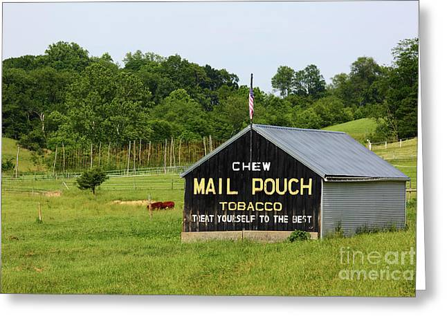Mail Pouch Tobacco Barn In Maryland Greeting Card