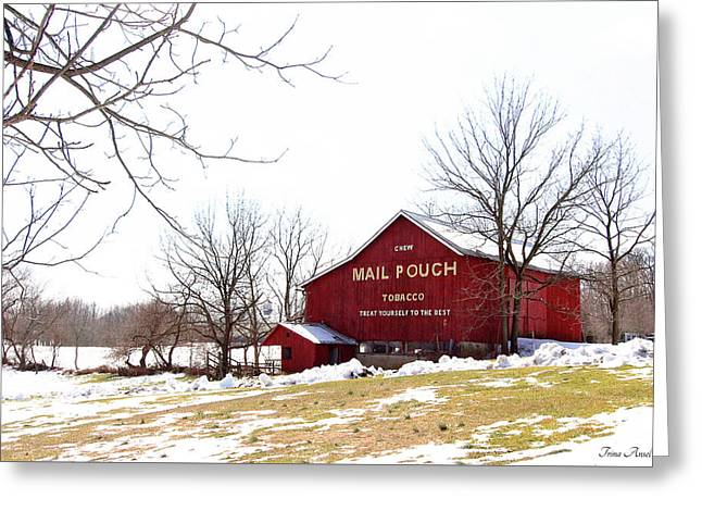Greeting Card featuring the photograph Mail Pouch Tobacco Barn by Trina Ansel