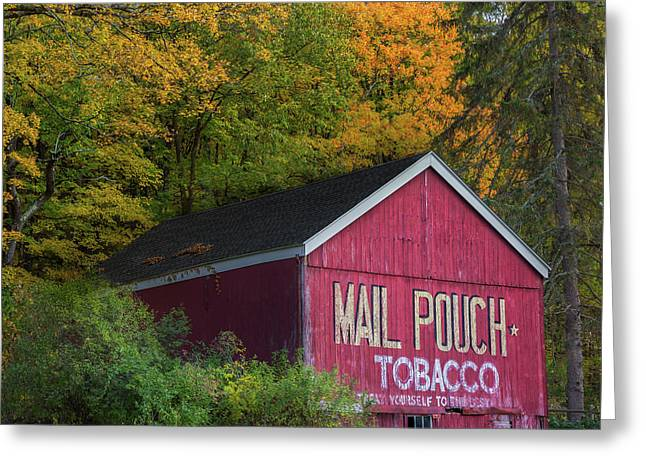 Mail Pouch Tobacco Square Greeting Card by Bill Wakeley