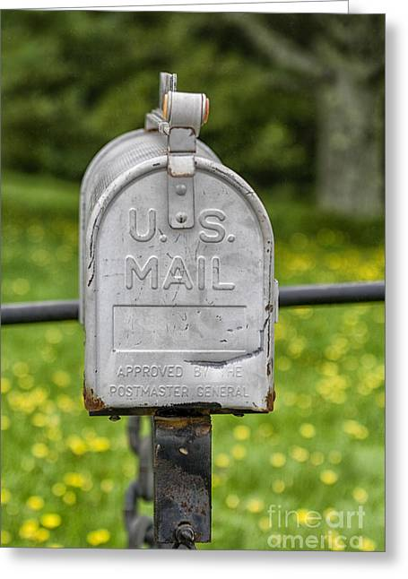 Mailbox Greeting Card by Patricia Hofmeester
