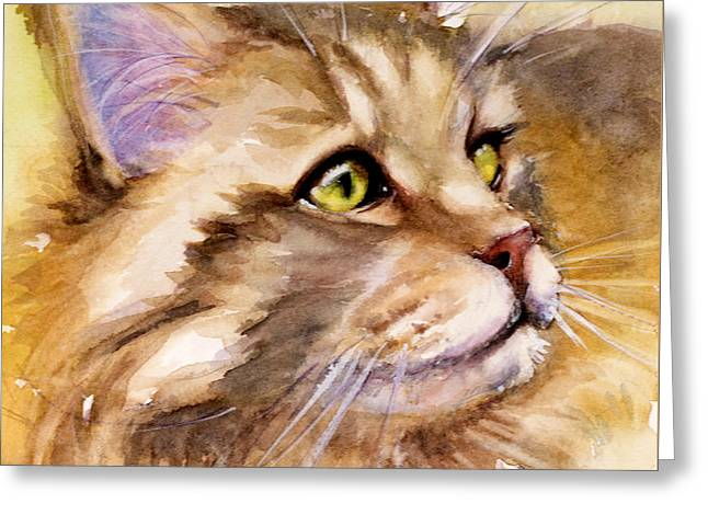 Main Coon Greeting Card by Judith Levins