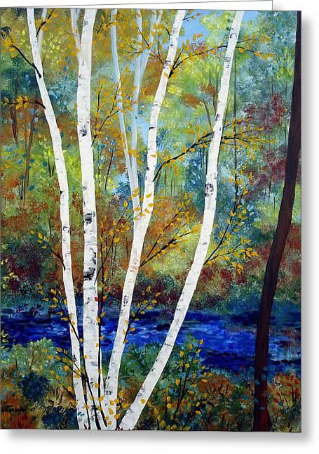 Birch Tree Greeting Cards - Maine Birch Stream Greeting Card by Laura Tasheiko