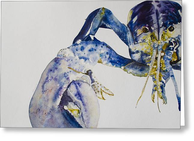 Maine Blue Lobster Greeting Card by Kellie Chasse