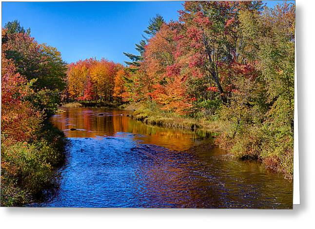 Maine Brook In Afternoon With Fall Color Reflection Greeting Card