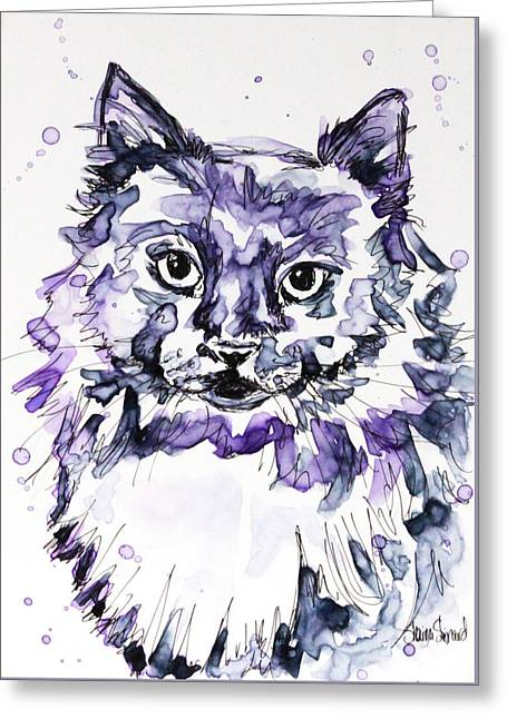 Maine Coon In Purple Greeting Card