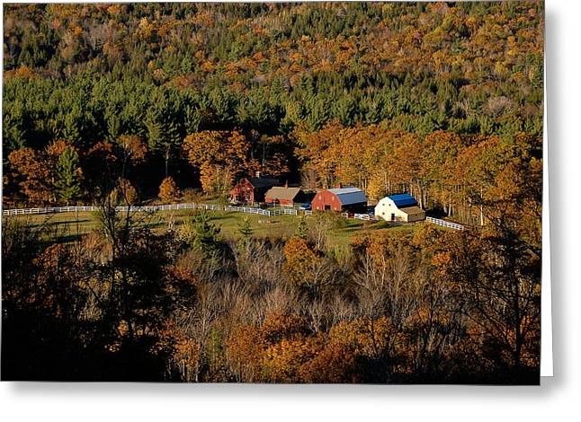 Maine Fall Colors Greeting Card by Gary Cloud