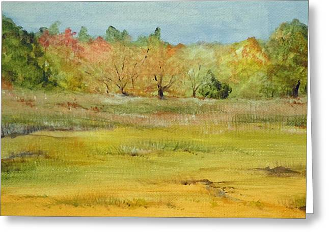 Maine Marsh Greeting Card by Jean Blackmer