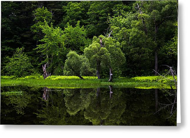 Maine Reflections Greeting Card