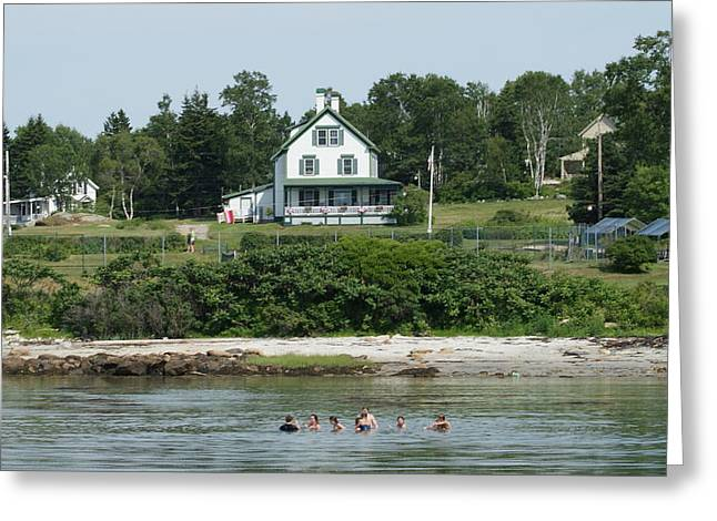 Maine Summer Greeting Card by Lois Lepisto