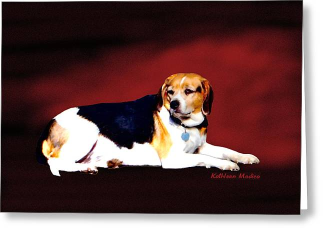 Greeting Card featuring the photograph Majestic by KLM Kathel