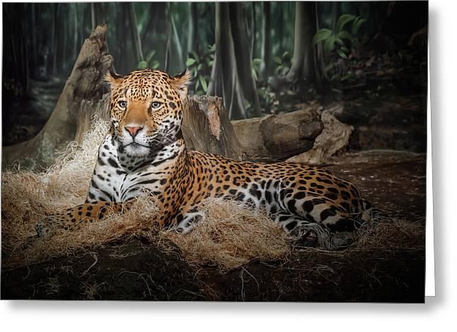 Majestic Leopard Greeting Card