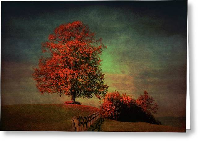 Majestic Linden Berry Tree Greeting Card by Susanne Van Hulst