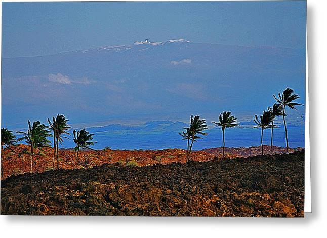 Mountains With Snow Greeting Cards - Majestic Mauna Kea Greeting Card by Bette Phelan