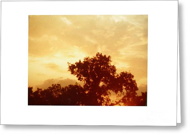 Majestic Sky Greeting Card by Hal Newhouser
