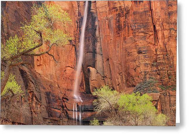 Greeting Card featuring the photograph Majestic Spring by Leland D Howard
