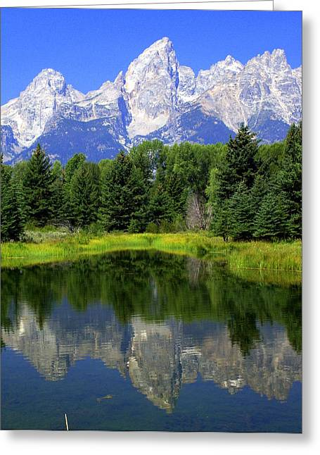 Majestic Tetons Greeting Card by Marty Koch