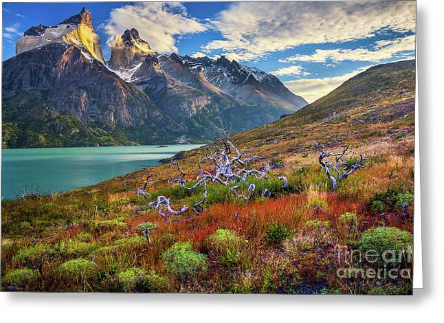 Majestic Torres Del Paine Greeting Card