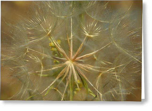 Make A Wish Greeting Card by Donna Blackhall