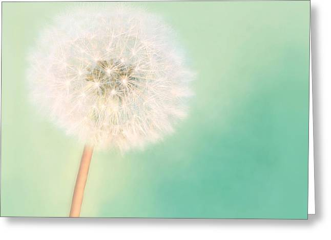 Make A Wish - Large Greeting Card by Amy Tyler
