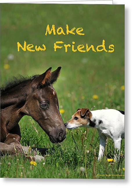 Make New Friends Greeting Card