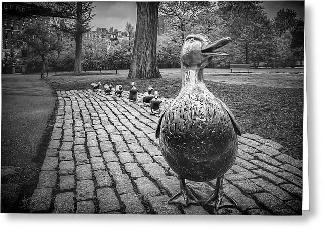 Make Way For Ducklings In Boston Black And White Greeting Card
