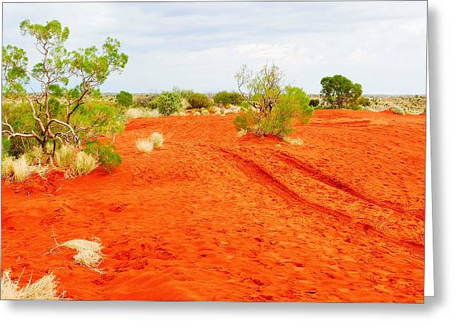 Making Tracks In The Dunes - Red Centre Australia Greeting Card