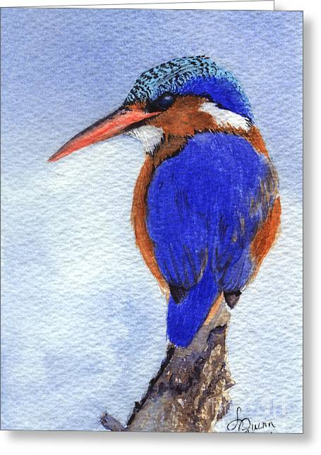 Malachite Kingfisher Greeting Card