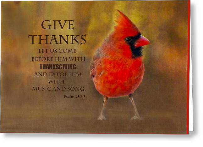 Male Cardinal In Fall Give Thanks Greeting Card