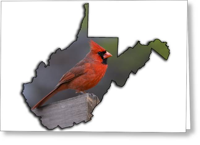 Male Cardinal Perched On Rail Greeting Card