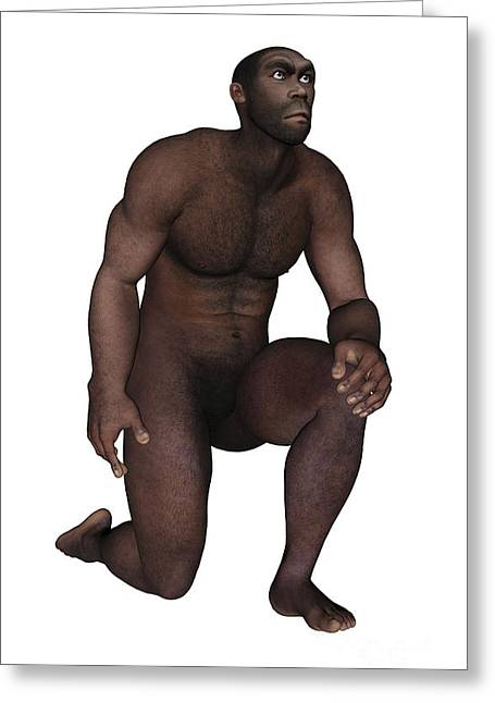 Male Homo Erectus Kneeling Greeting Card